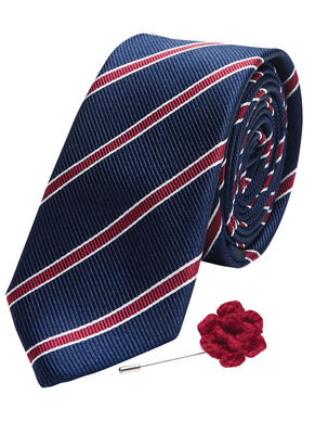 TIE & LAPEL PIN GIFT SET