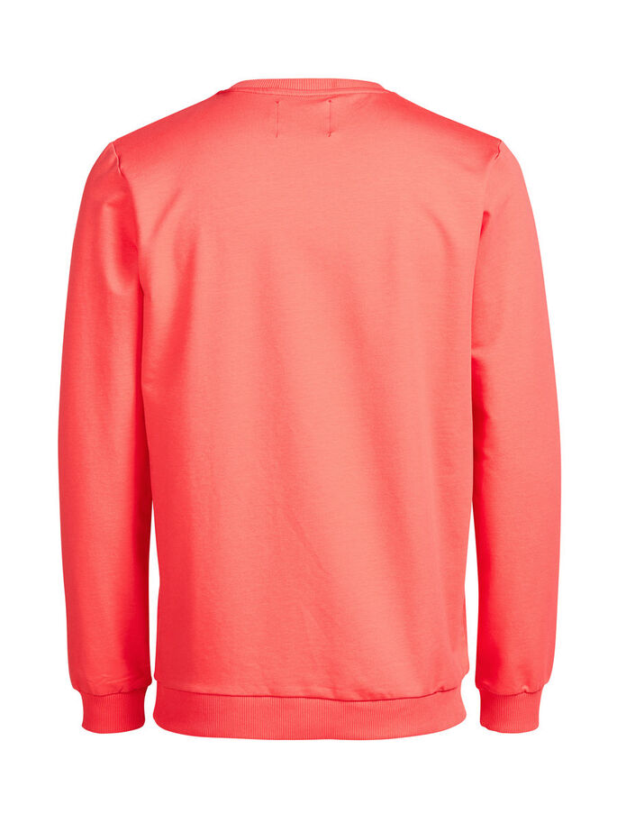 GRAFISK SWEATSHIRT, Cayenne, large