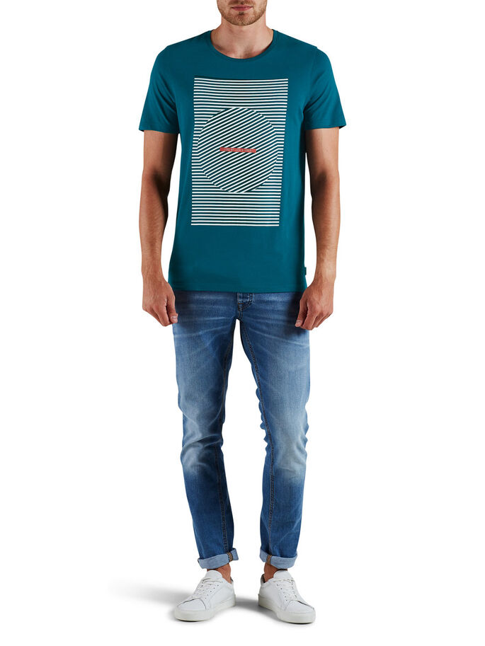 GRAPHIC T-SHIRT, Reflecting Pond, large