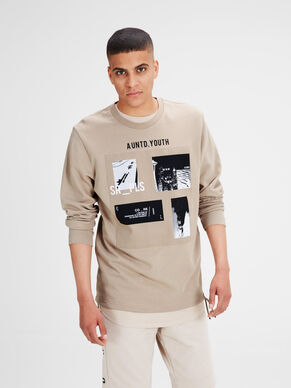 PRINTED REGULAR FIT CREW NECK SWEATSHIRT