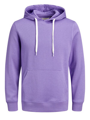 JACK & JONES Lässiges Sweatshirt Herren Violett | 5713742489099