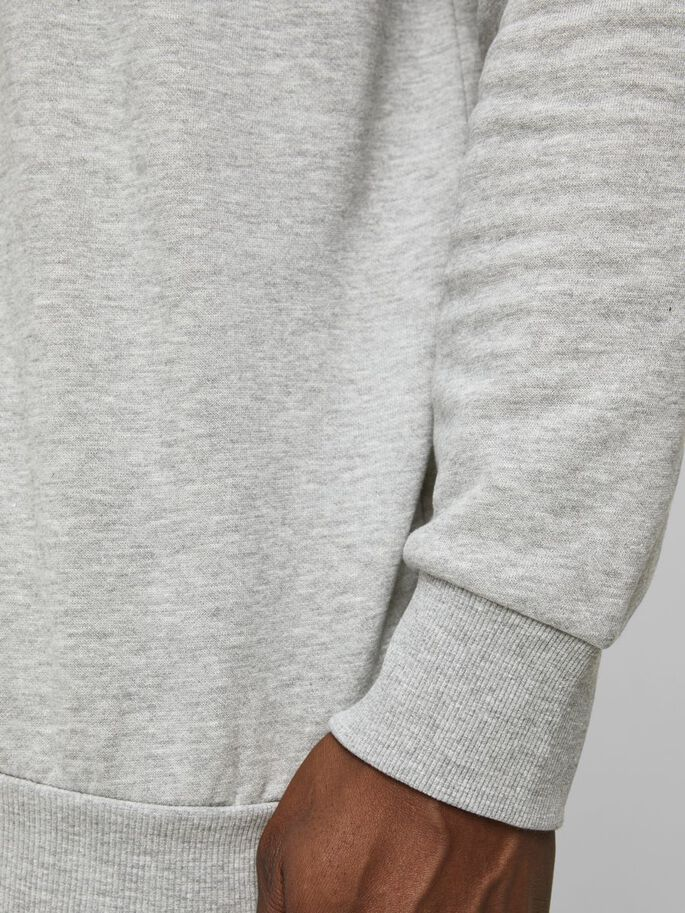 SWEAT PLUS SIZE HOODIE, Light Grey Melange, large